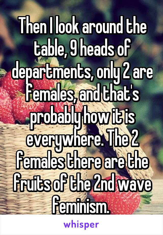 Then I look around the table, 9 heads of departments, only 2 are females, and that's probably how it is everywhere. The 2 females there are the fruits of the 2nd wave feminism.