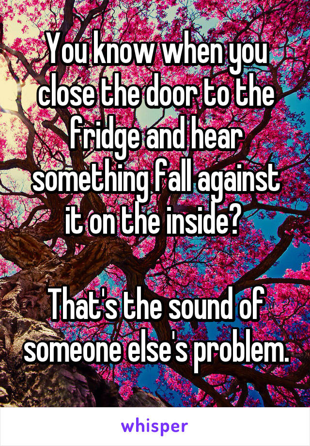You know when you close the door to the fridge and hear something fall against it on the inside?   That's the sound of someone else's problem.