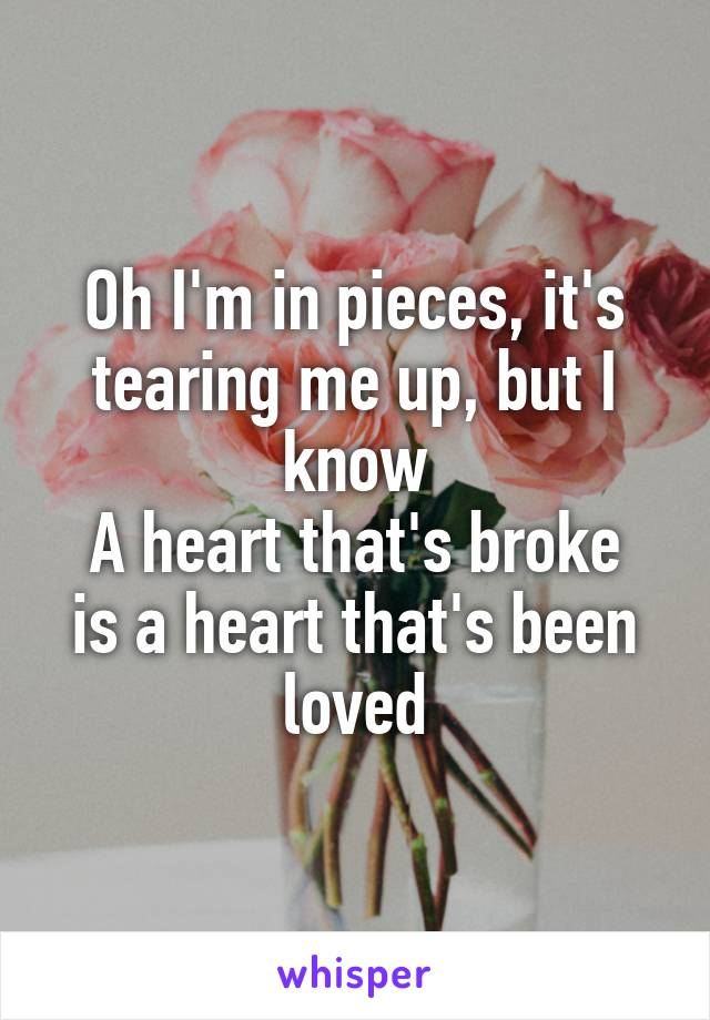Oh I'm in pieces, it's tearing me up, but I know A heart that's broke is a heart that's been loved