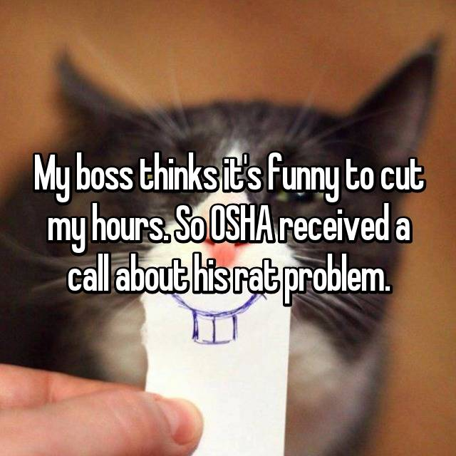My boss thinks it's funny to cut my hours. So OSHA received a call about his rat problem.