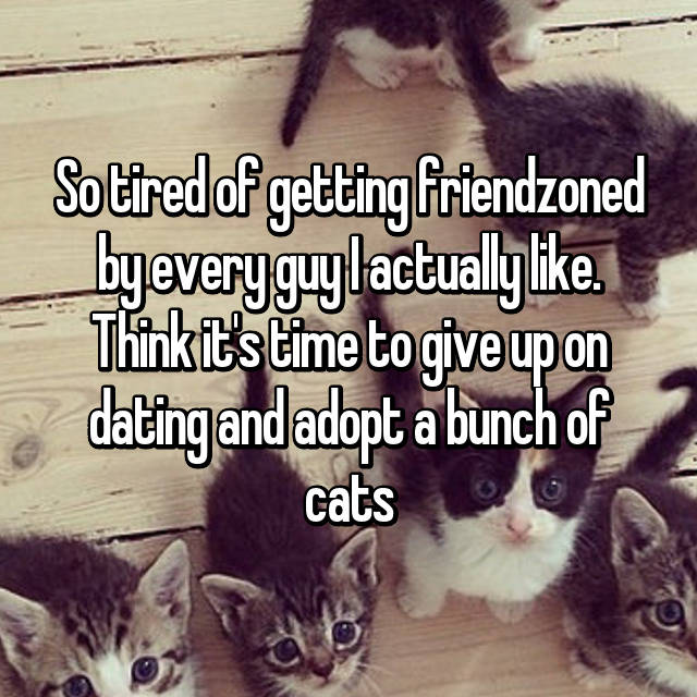 So tired of getting friendzoned by every guy I actually like. Think it's time to give up on dating and adopt a bunch of cats