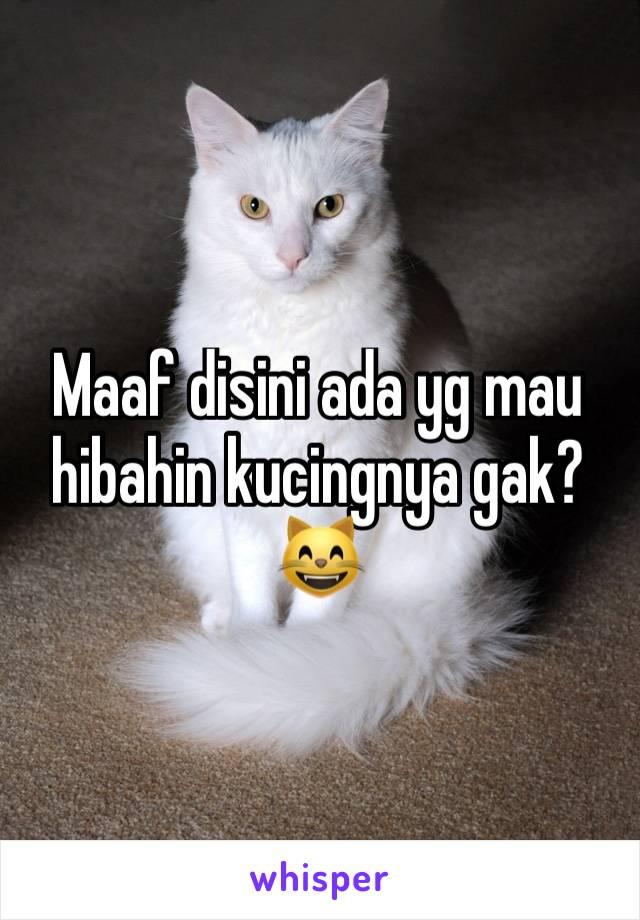 Maaf disini ada yg mau hibahin kucingnya gak? 😸