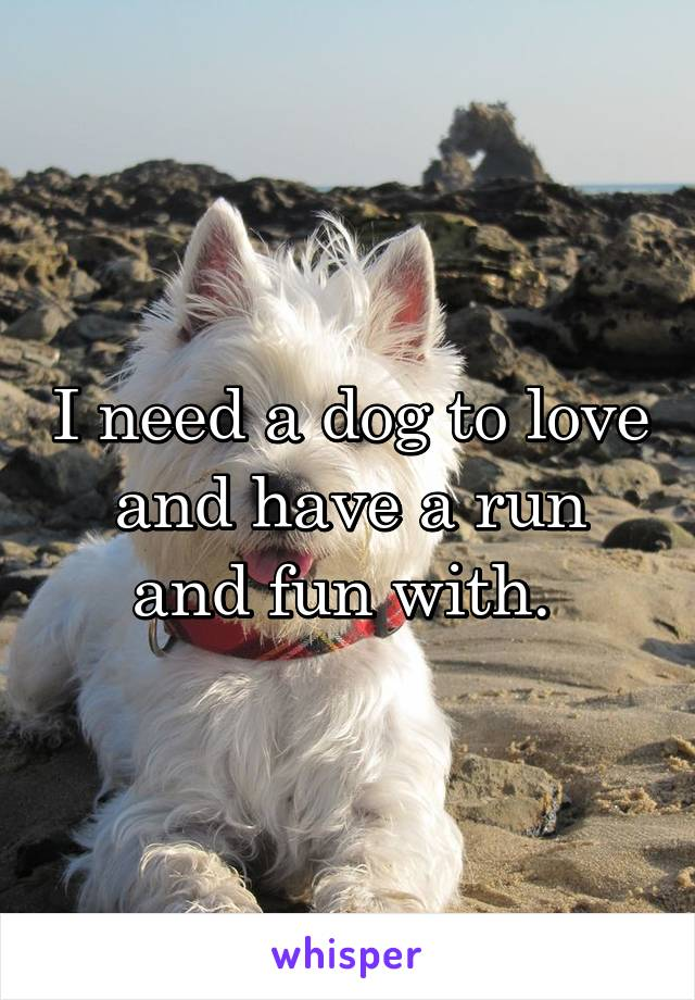 I need a dog to love and have a run and fun with.