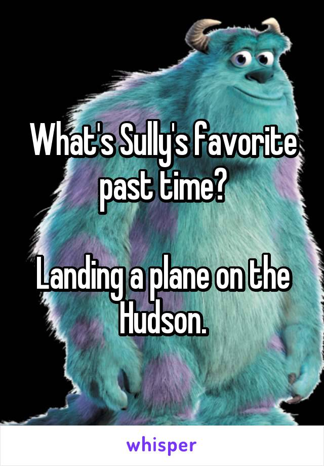 What's Sully's favorite past time?  Landing a plane on the Hudson.