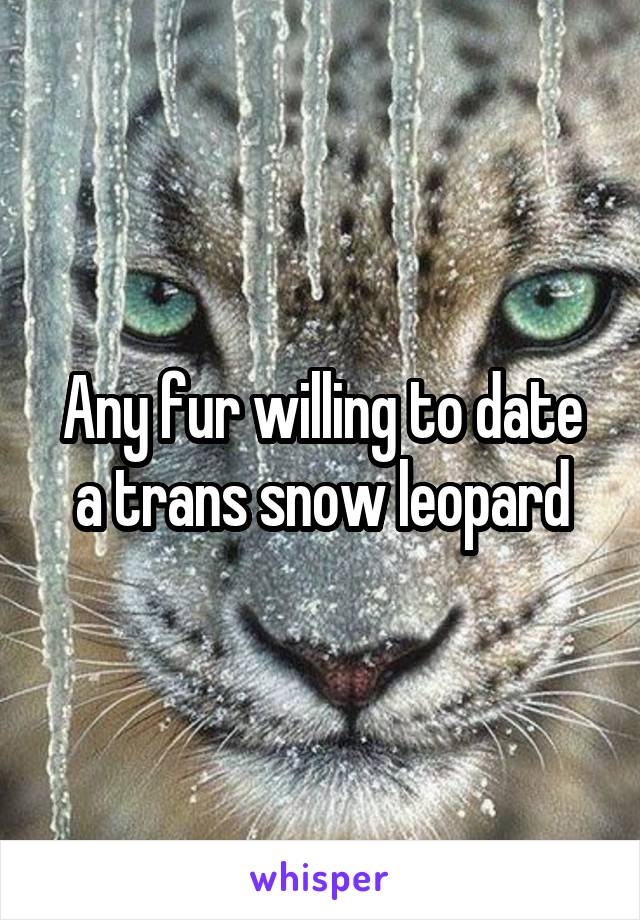 Any fur willing to date a trans snow leopard