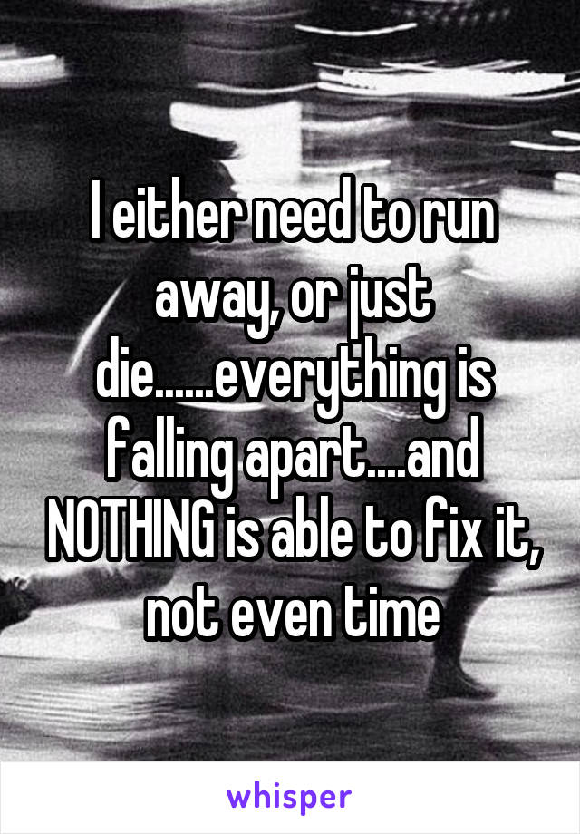 I either need to run away, or just die......everything is falling apart....and NOTHING is able to fix it, not even time
