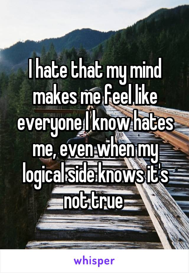 I hate that my mind makes me feel like everyone I know hates me, even when my logical side knows it's not true