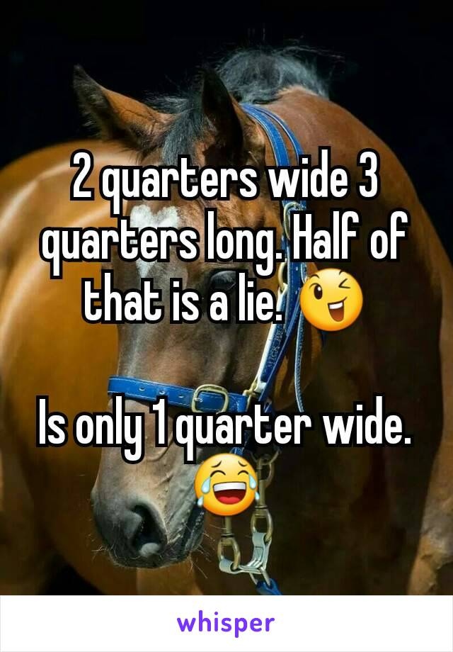 2 quarters wide 3 quarters long. Half of that is a lie. 😉  Is only 1 quarter wide. 😂