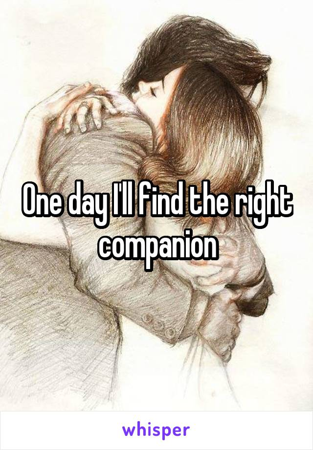 One day I'll find the right companion