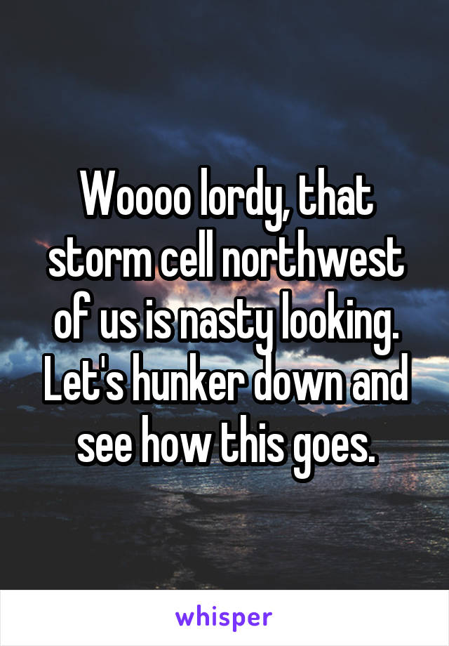 Woooo lordy, that storm cell northwest of us is nasty looking. Let's hunker down and see how this goes.