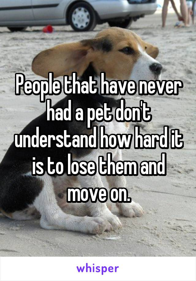 People that have never had a pet don't understand how hard it is to lose them and move on.