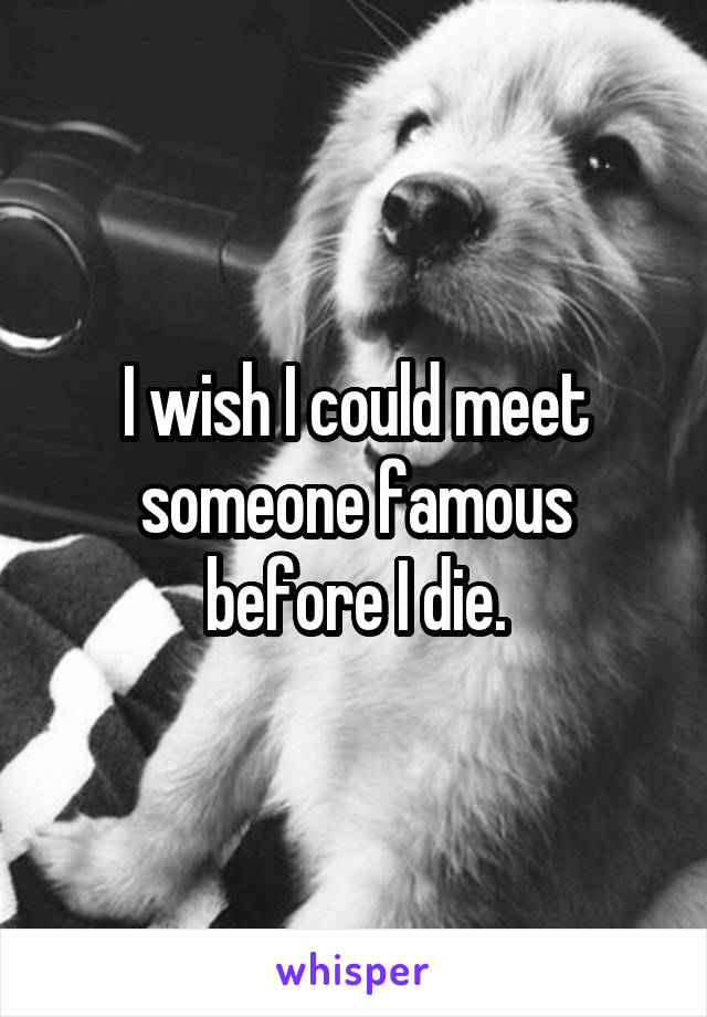 I wish I could meet someone famous before I die.