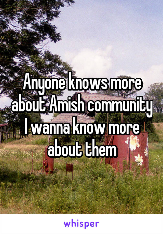 Anyone knows more about Amish community I wanna know more about them