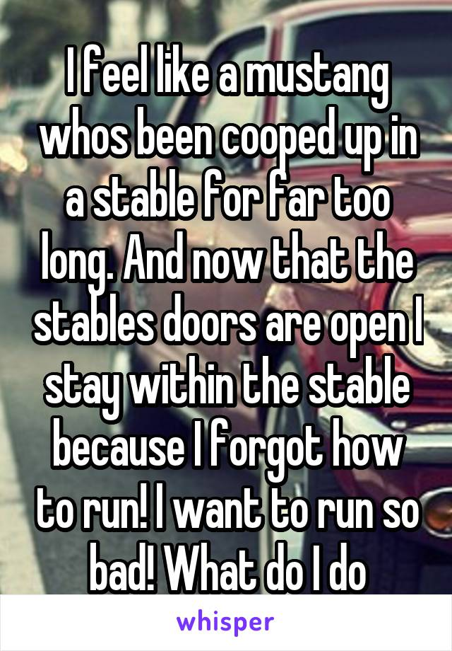 I feel like a mustang whos been cooped up in a stable for far too long. And now that the stables doors are open I stay within the stable because I forgot how to run! I want to run so bad! What do I do