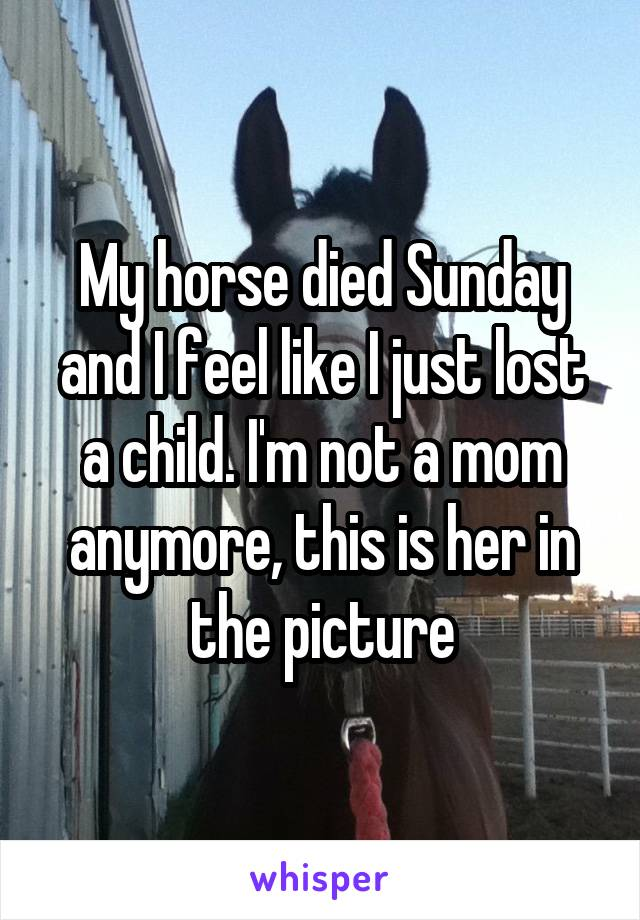 My horse died Sunday and I feel like I just lost a child. I'm not a mom anymore, this is her in the picture