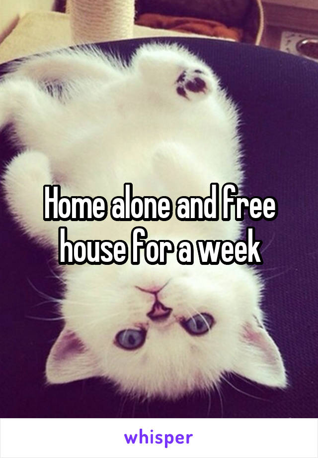 Home alone and free house for a week