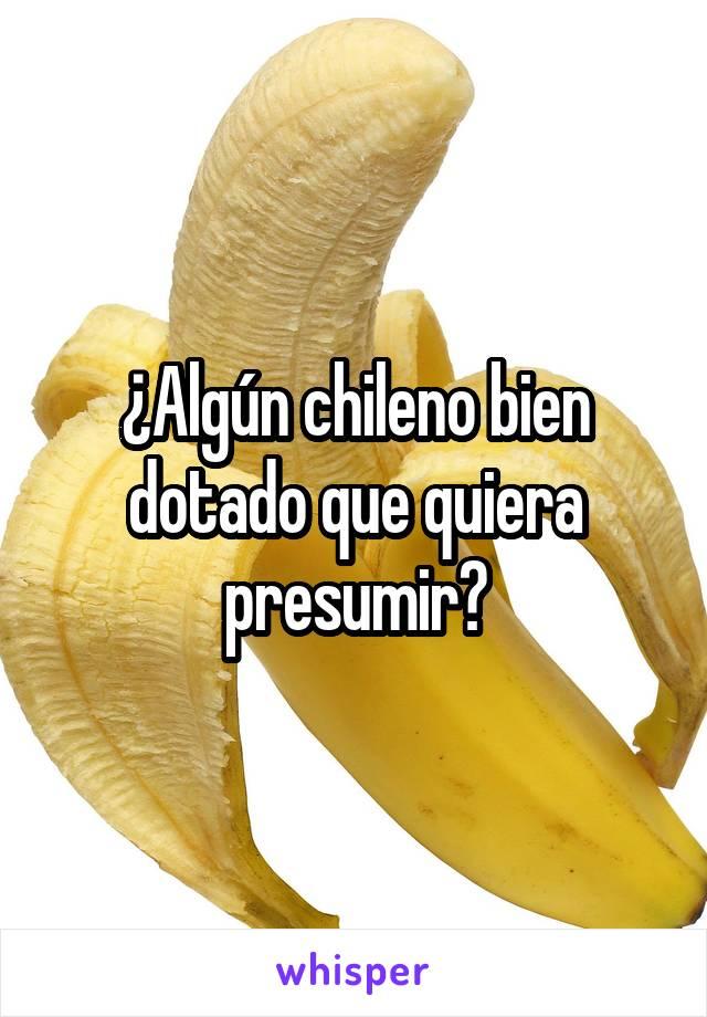 ¿Algún chileno bien dotado que quiera presumir?