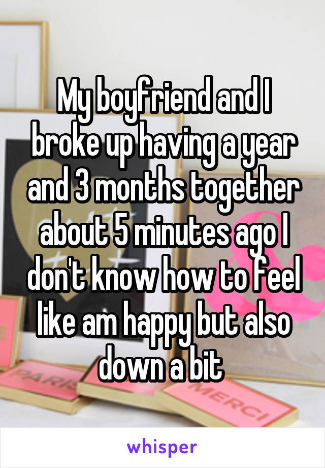 My boyfriend and I broke up having a year and 3 months together about 5 minutes ago I don't know how to feel like am happy but also down a bit