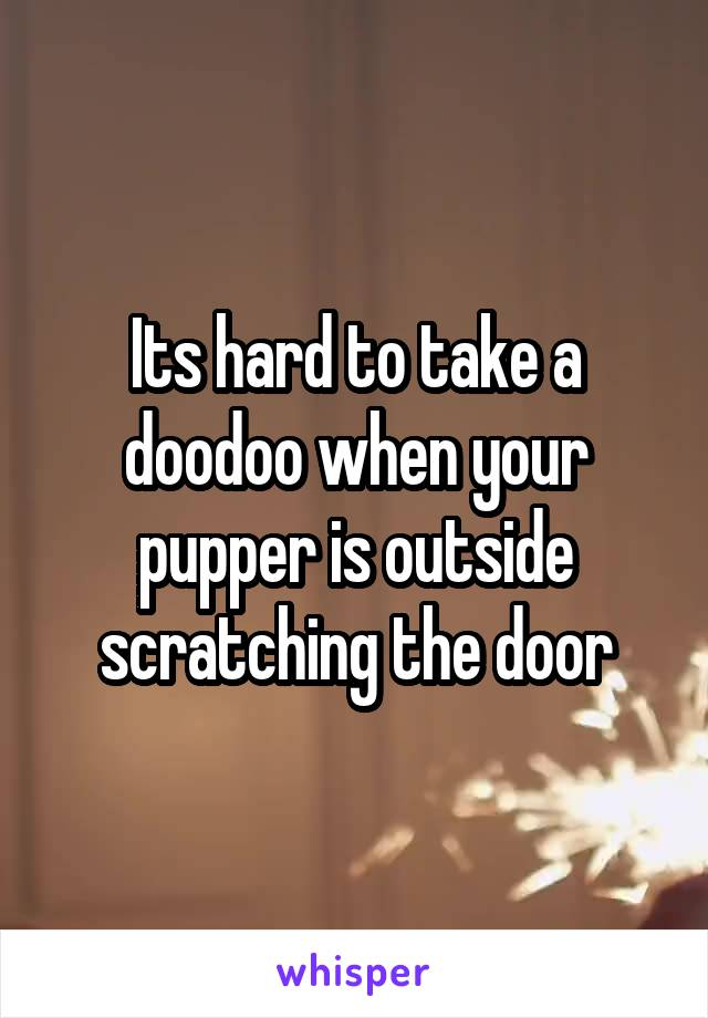 Its hard to take a doodoo when your pupper is outside scratching the door