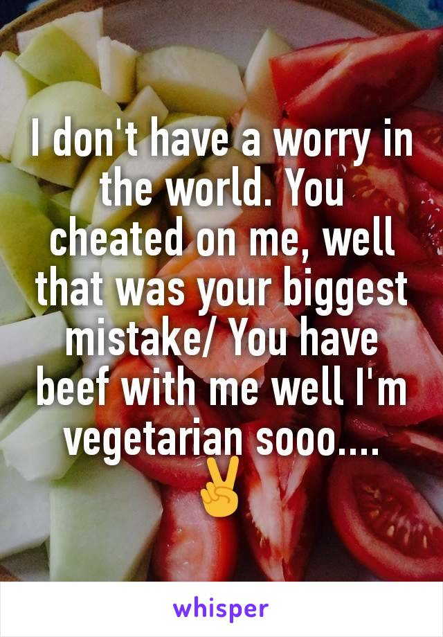 I don't have a worry in the world. You cheated on me, well that was your biggest mistake/ You have beef with me well I'm vegetarian sooo.... ✌
