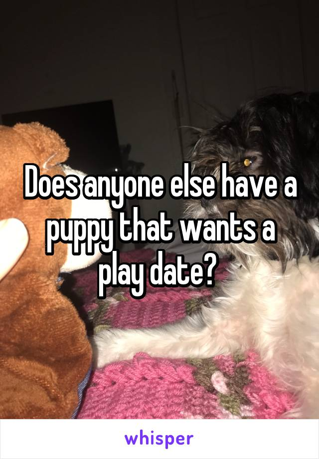 Does anyone else have a puppy that wants a play date?