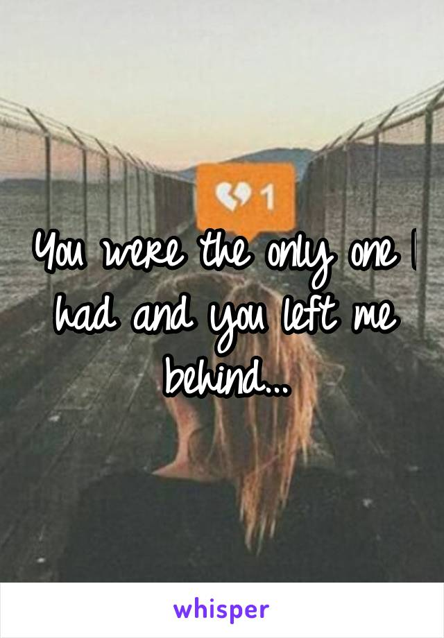 You were the only one I had and you left me behind...