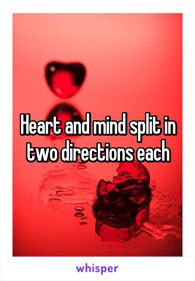 Heart and mind split in two directions each