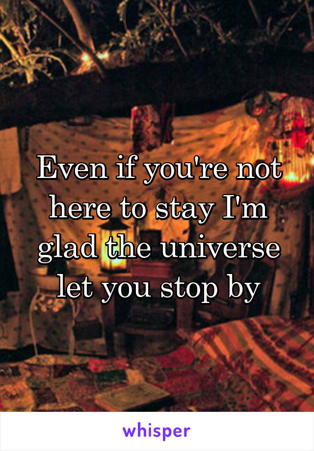 Even if you're not here to stay I'm glad the universe let you stop by