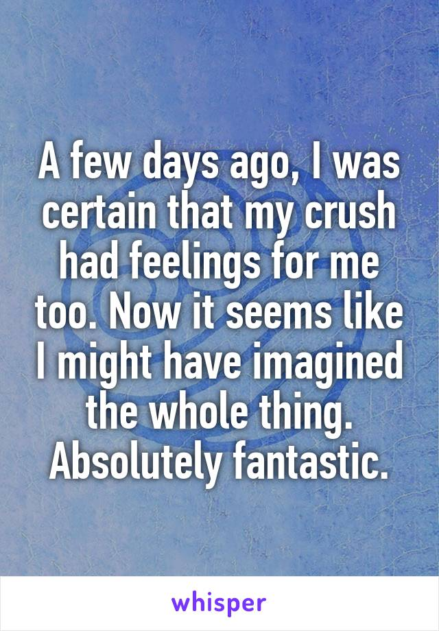 A few days ago, I was certain that my crush had feelings for me too. Now it seems like I might have imagined the whole thing. Absolutely fantastic.