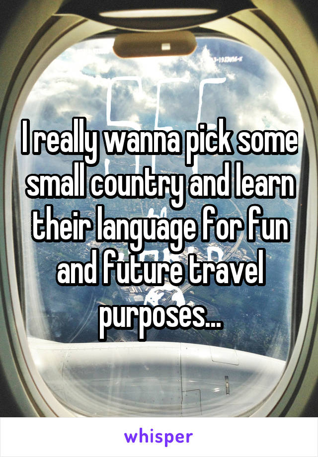 I really wanna pick some small country and learn their language for fun and future travel purposes...