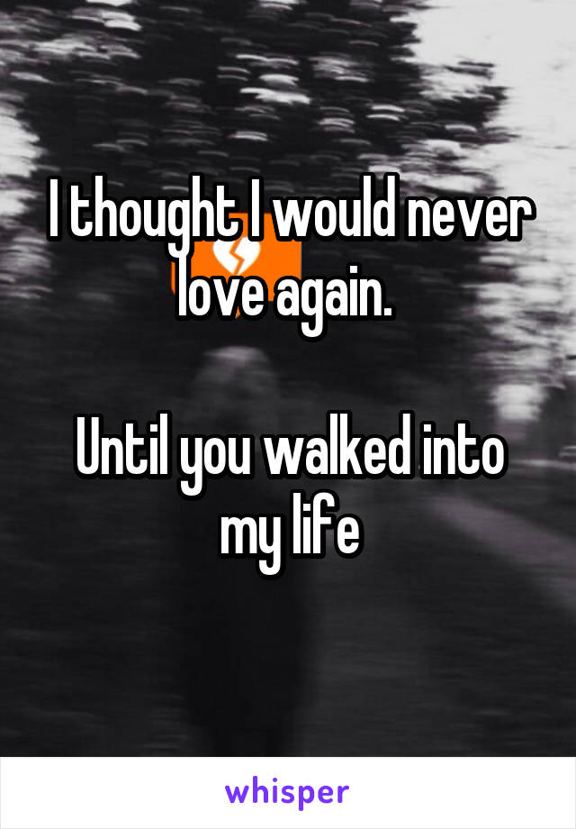 I thought I would never love again.   Until you walked into my life