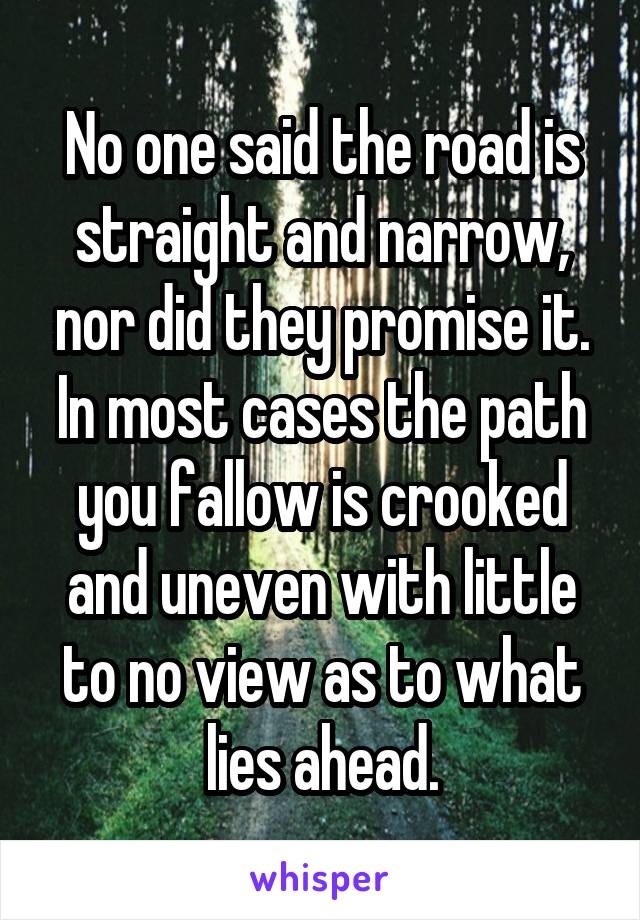 No one said the road is straight and narrow, nor did they promise it. In most cases the path you fallow is crooked and uneven with little to no view as to what lies ahead.