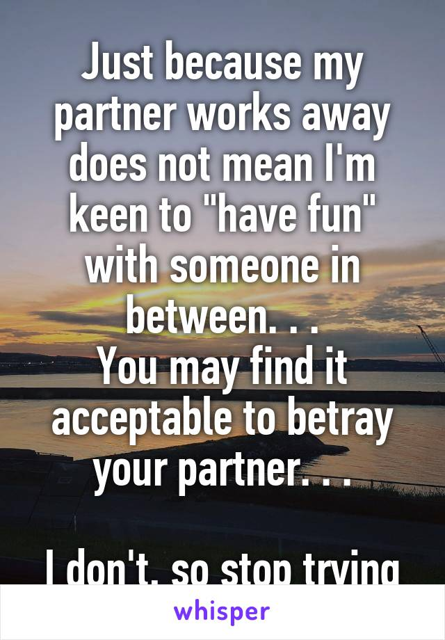 """Just because my partner works away does not mean I'm keen to """"have fun"""" with someone in between. . . You may find it acceptable to betray your partner. . .  I don't, so stop trying"""