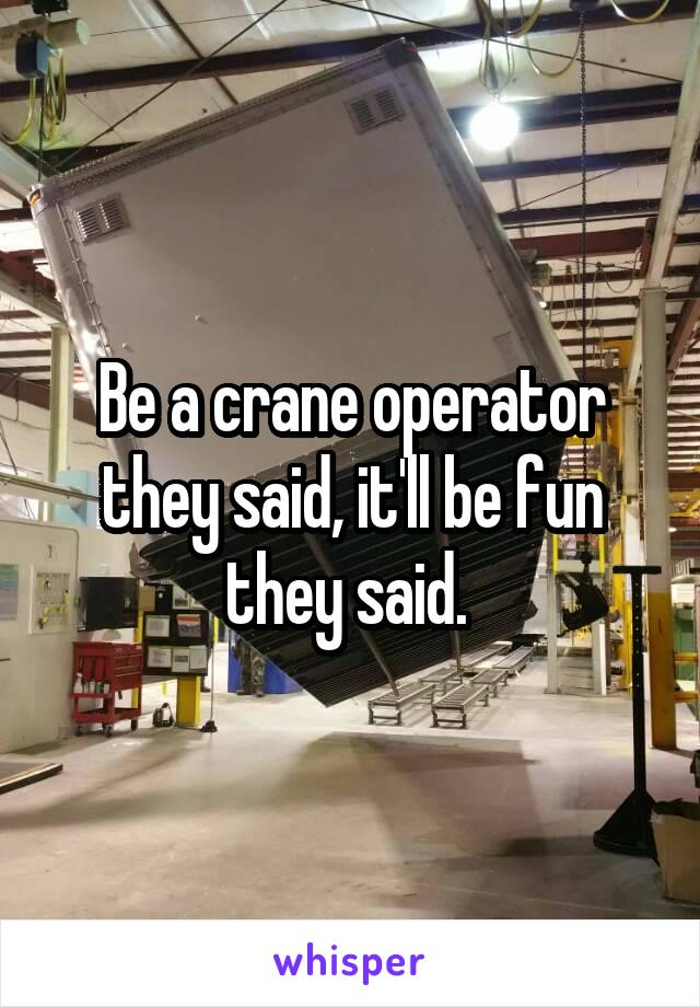 Be a crane operator they said, it'll be fun they said.