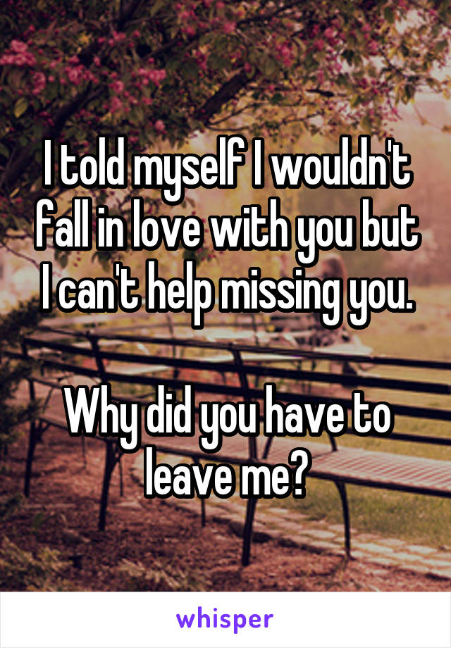 I told myself I wouldn't fall in love with you but I can't help missing you.  Why did you have to leave me?