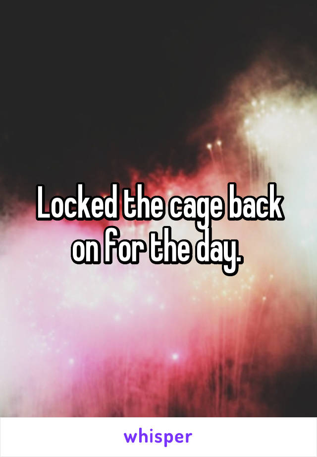 Locked the cage back on for the day.