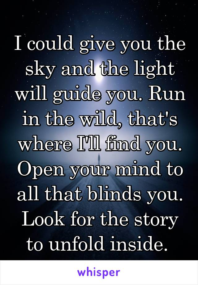 I could give you the sky and the light will guide you. Run in the wild, that's where I'll find you. Open your mind to all that blinds you. Look for the story to unfold inside.