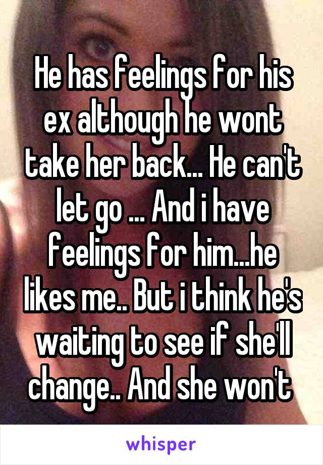 He has feelings for his ex although he wont take her back... He can't let go ... And i have feelings for him...he likes me.. But i think he's waiting to see if she'll change.. And she won't
