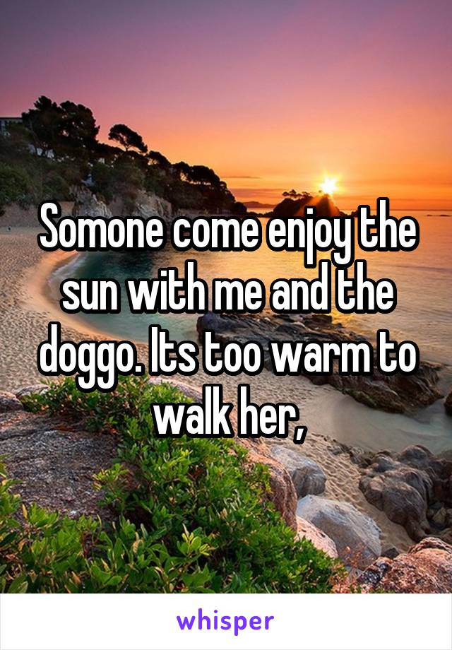 Somone come enjoy the sun with me and the doggo. Its too warm to walk her,