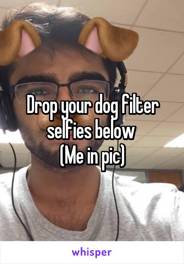 Drop your dog filter selfies below  (Me in pic)