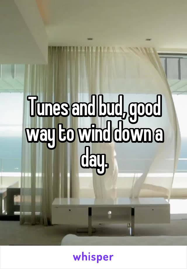 Tunes and bud, good way to wind down a day.