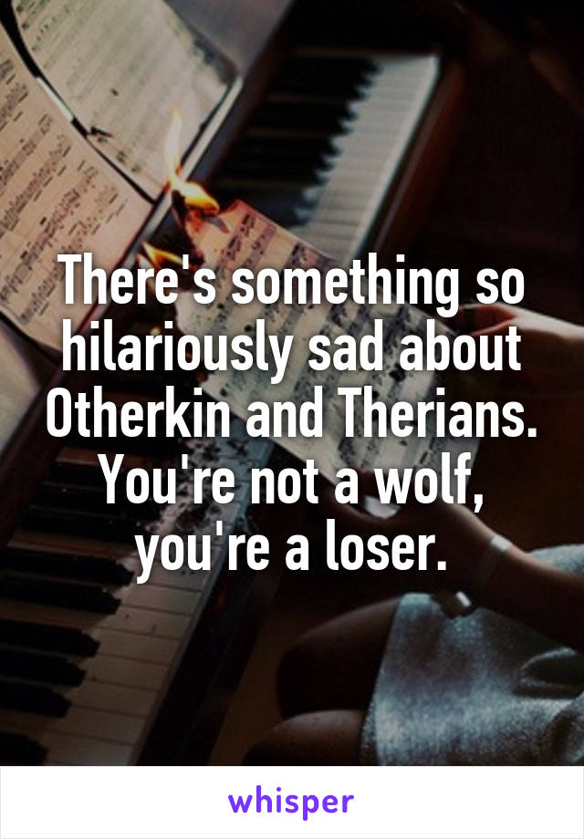 There's something so hilariously sad about Otherkin and Therians. You're not a wolf, you're a loser.