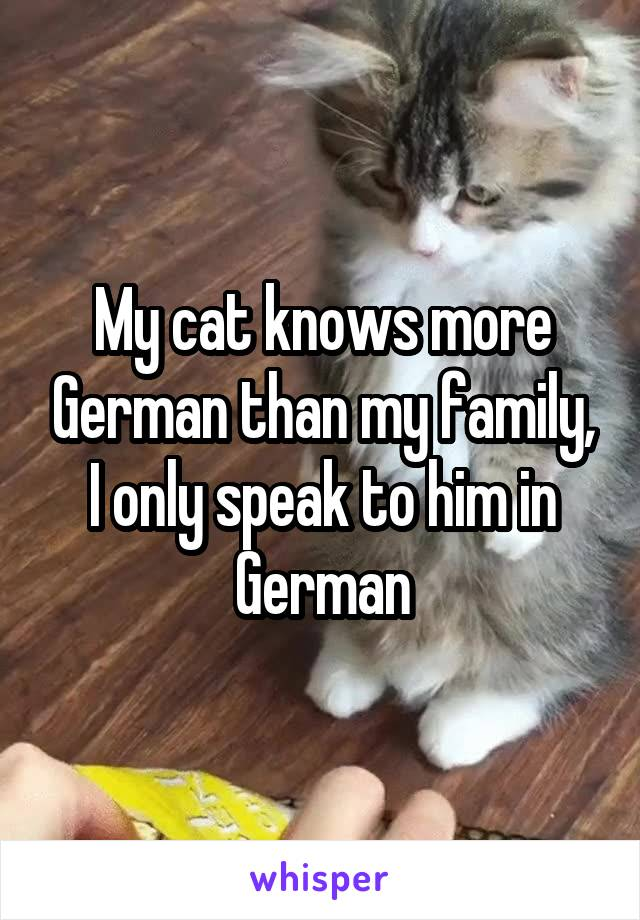 My cat knows more German than my family, I only speak to him in German