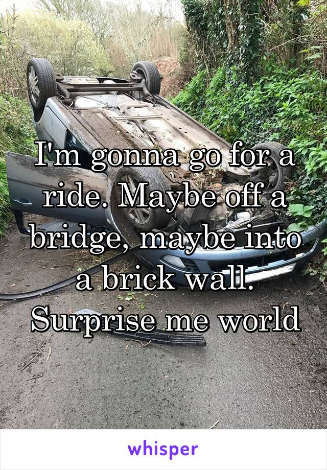 I'm gonna go for a ride. Maybe off a bridge, maybe into a brick wall. Surprise me world