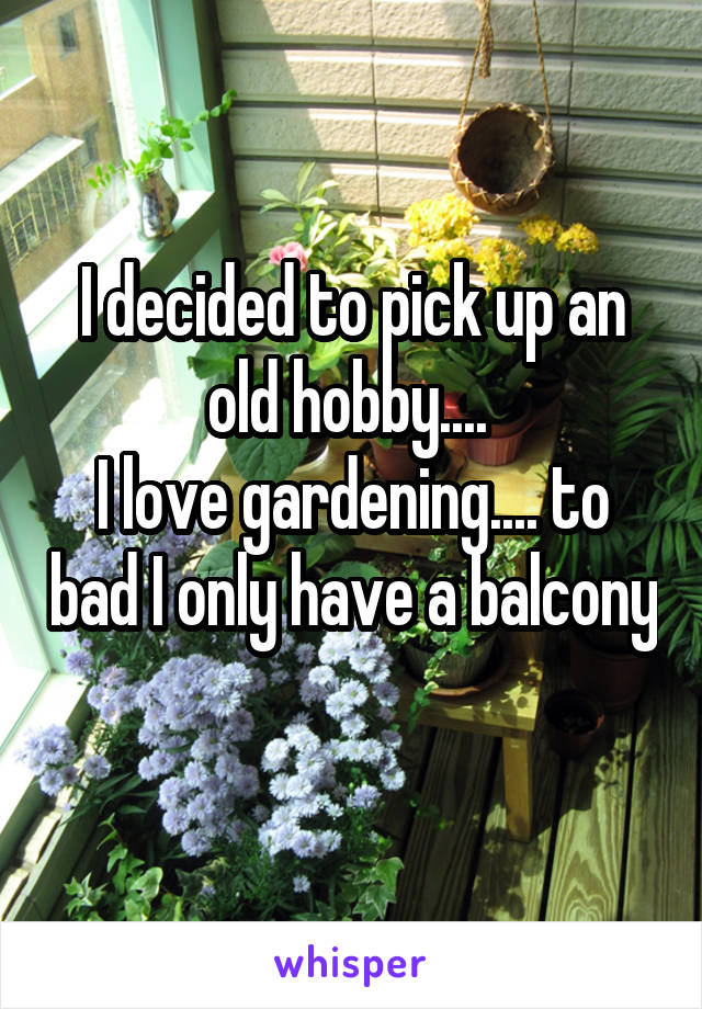 I decided to pick up an old hobby....  I love gardening.... to bad I only have a balcony
