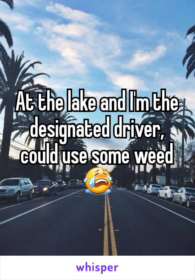 At the lake and I'm the designated driver, could use some weed 😭