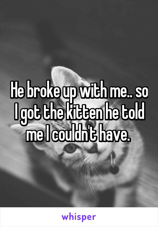 He broke up with me.. so I got the kitten he told me I couldn't have.