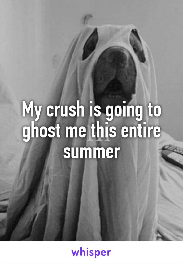 My crush is going to ghost me this entire summer
