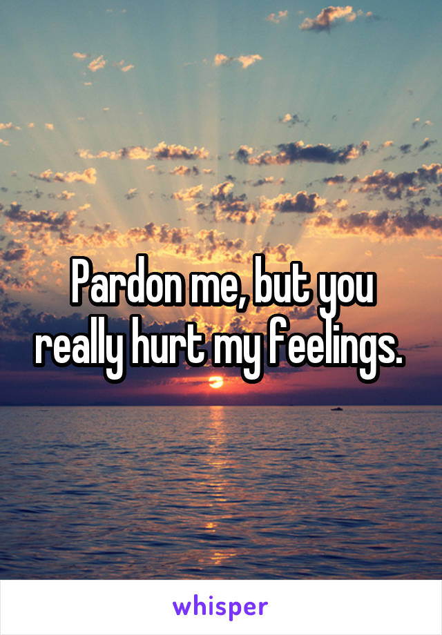 Pardon me, but you really hurt my feelings.