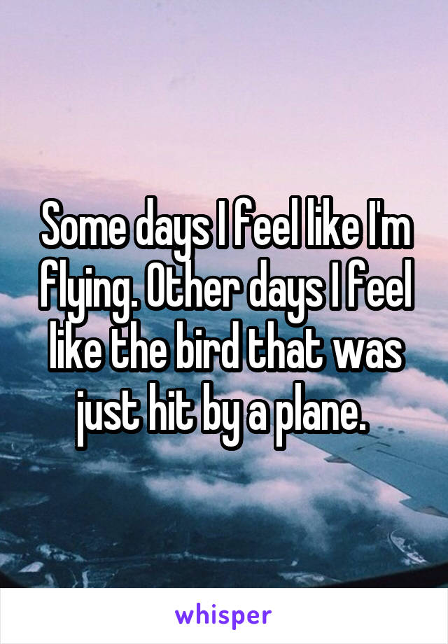 Some days I feel like I'm flying. Other days I feel like the bird that was just hit by a plane.